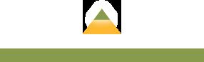 Fort Myers logo